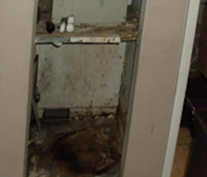 Photo of inside of a closet with mold growth