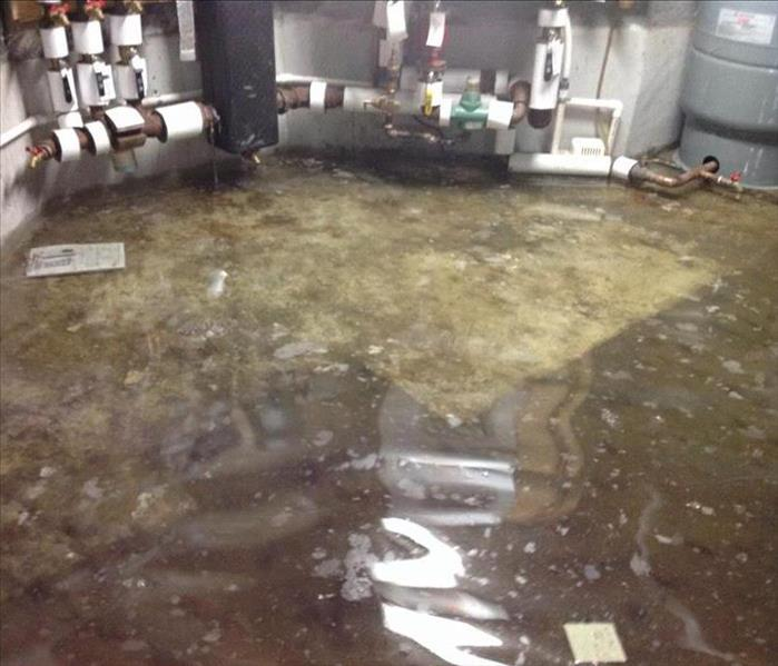 Photo of a utility room with several inches of standing water