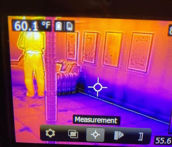 Picture of a thermal image screen