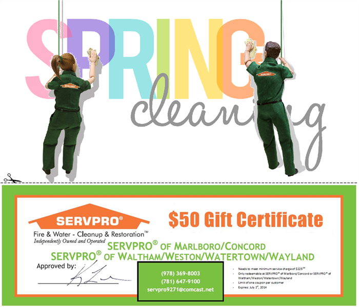 Cleaning Spring Cleaning Promotion!