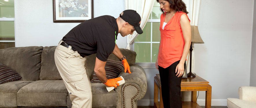 Marlborough, MA carpet upholstery cleaning